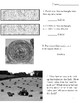 Farm Lesson: Story of a Hay Bale - Geometry Worksheet
