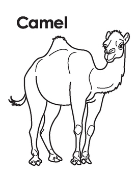 Animal Coloring Page: Camel