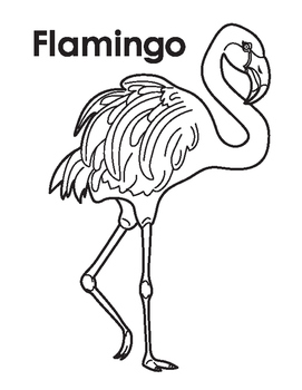 Animal Coloring Page: Flamingo