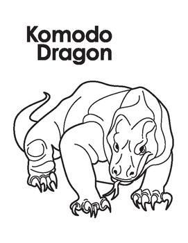 Animal Coloring Page: Komodo Dragon