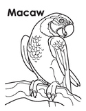 Animal Coloring Page: Macaw