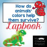 Animal Colors Help Them Survive Kindergarten Journeys Unit 5 Lesson 24 Lap book