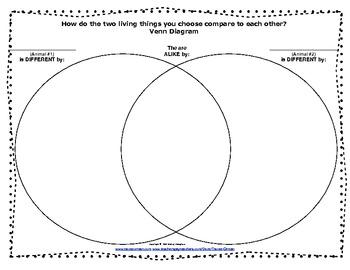 Animal Comparison Report, Graphic Organizers, Venn Diagrams, Charts