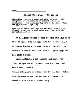Animal Comprehension Paragraph Punctuation Editing Worksheets ...
