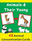 Animal Concentration: Adults and Young