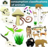 Animal Consumption Classifications Clip Art