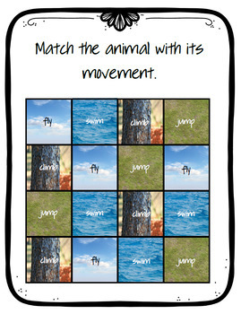 Animal Movement and Coverings
