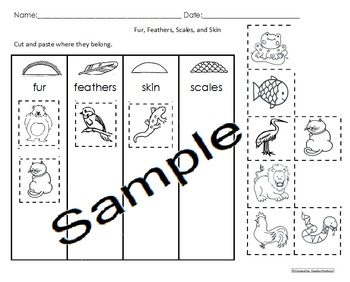 Animal Coverings Activities Pack Science