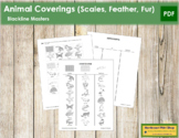 Animal Coverings (Scales, Feathers, Fur) - Blackline Masters