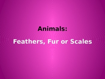 Animal Coverings Feathers, Fur or Scales  Kindergarten