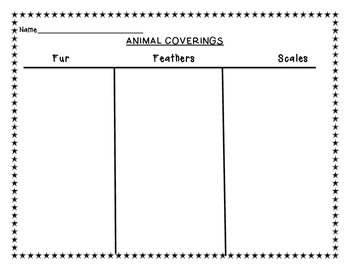 Animal Coverings Graphic Organizer