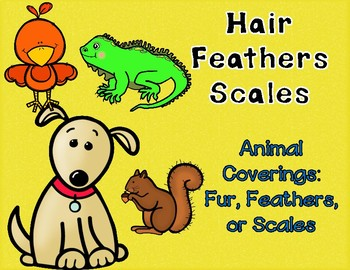 Animal Coverings Sorting Game:  Feathers, Fur, or Scales Center