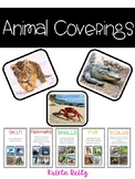 Animal Coverings {skin, feathers,scales, shells, fur}