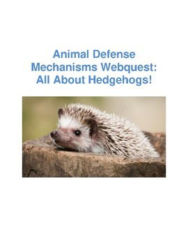 Animal Defense Webquest: All About the Hedgehog With Answer Key!
