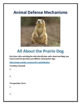 Animal Defense Webquest All About The Prairie Dog With Answer Key