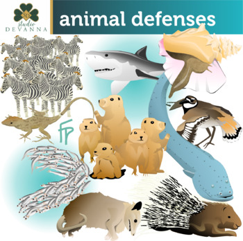 Animal Defense Worksheets Teaching Resources Tpt