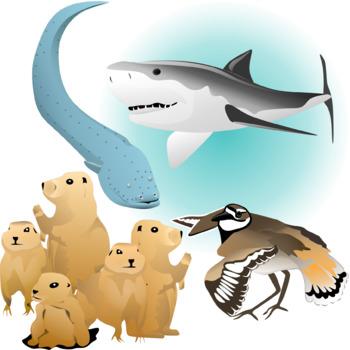 Animal Defenses Clip Art