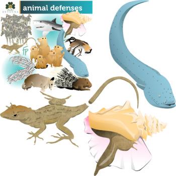 Animal Defenses Clip Art Bundle