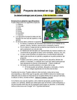 Animal Diorama in English and Spanish