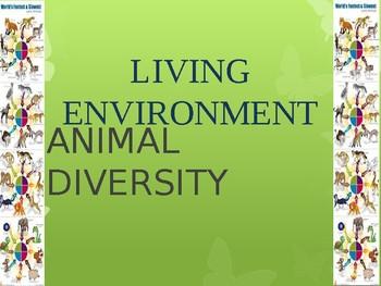 Animal Diversity PPT