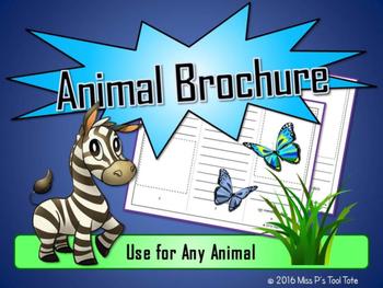 Animal Ecosystem Brochure