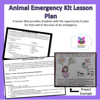 Animal Emergency Kit Lesson Plan