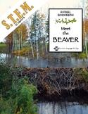 Animal Engineers: Meet the Beaver STEM STREAM STEAM Challenge