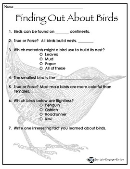 Animal Engineers: Meet the Bird STEM STREAM STEAM Challenge
