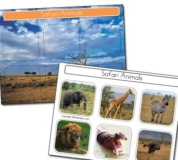 Animal Environments: Sort & Classify