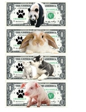Animal Epic Dollars