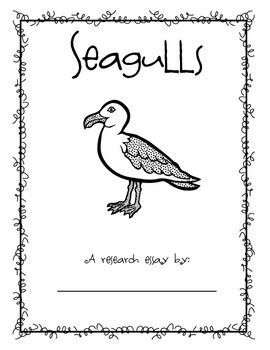 Animal Essay- Seagulls