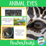 Animal Eyes PowerPoint Activity (23 slides)