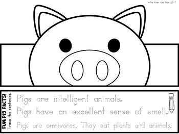 Animal Hat Pig Crown - Pig Hat