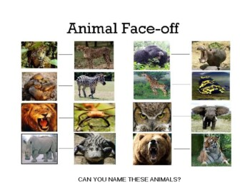 Animal Face-Offs