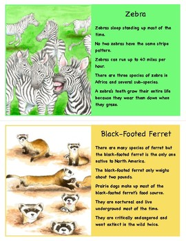 Animal Fact Cards