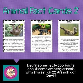 Animal Fact Cards Version 2