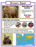 Animal Fact Sheets