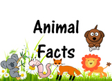 Animal Facts + Animal Projects