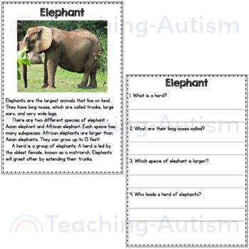 Animal Facts Reading Comprehension Passages and Questions