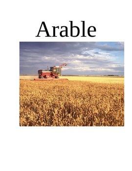 Animal Farm Ch 4-6 Vocabulary Packet
