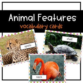 Animal Features Picture Cards {ESL}