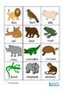 Animals Flash Cards - Name, Sort, Match, Autism, Speech Th