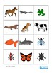 Animals Flash Cards - Name, Sort, Match, Autism Vocabulary