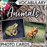 Animal Vocabulary Flashcards (Speech Therapy, Special Education, ESL, etc.)