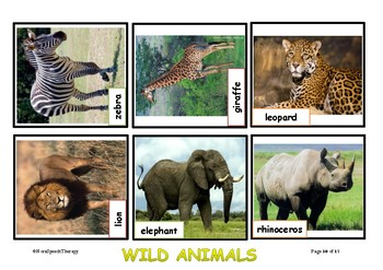 Animal Flashcards - Afrikaans & English