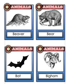 Animal Flashcards- With an Animal Research Template and Wordsearch
