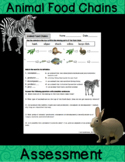 Animal Food Chains Activity Sheet