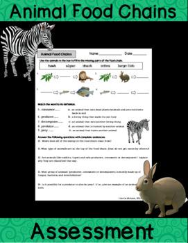Animal Food Chains Activity Sheet