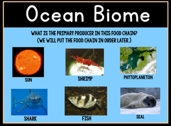 Animal Food Chains and Biomes Promethean ActivInspire Flipchart Lesson