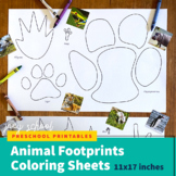 "Animal Footprints Coloring Sheets (11""x17""), Matching, Sci"